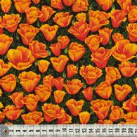 Orange tulipanhoveder.